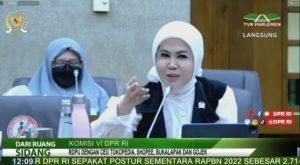 Anggota Komisi VI DPR Fraksi PAN Intan Fauzi